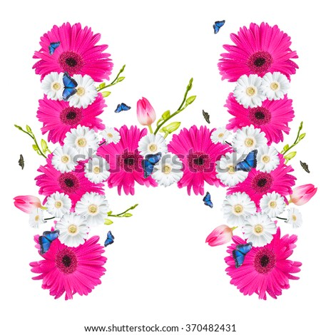 alphabet flower H, Gerber, tulips and butterfly isolated on white background.  - stock photo