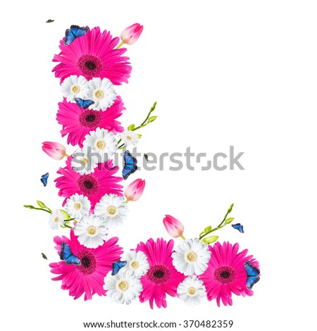 alphabet flower L, Gerber, tulips and butterfly isolated on white background.  - stock photo
