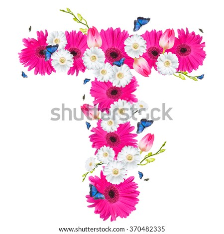 alphabet flower T, Gerber, tulips and butterfly isolated on white background.  - stock photo
