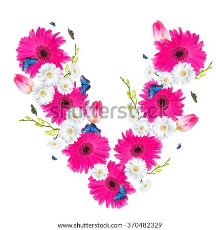 alphabet flower V, Gerber, tulips and butterfly isolated on white background.  - stock photo