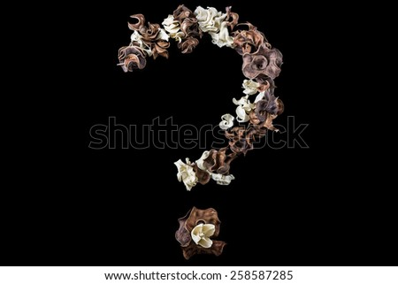 Alphabet from dry plants font question mark isolated  on black background - stock photo