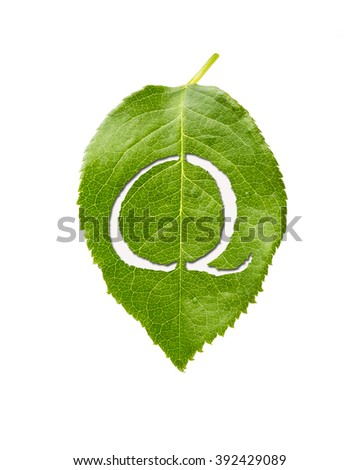 alphabet letter cut out in fresh green leaf, Q, part of a set, Isolated on white background