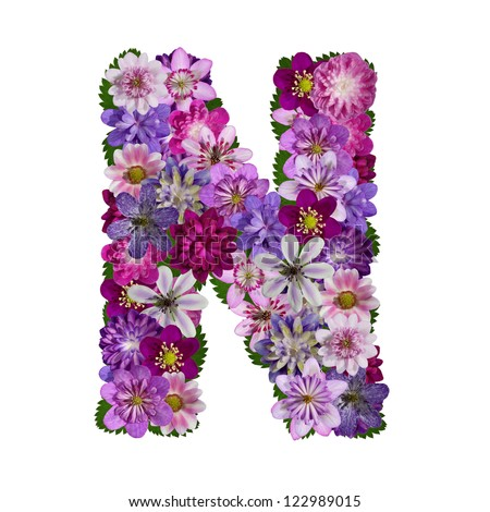Flower letter n stock images royalty free images vectors alphabet made of flower letter n sciox Gallery