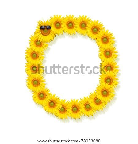 alphabet  O, sunflower isolated on white background - stock photo