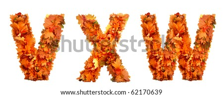 alphabet of autumn leaves