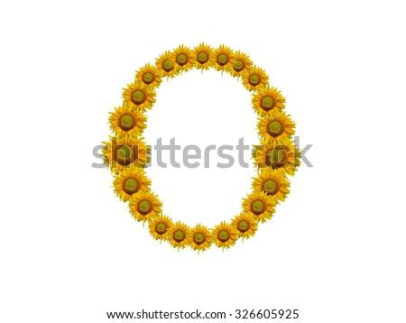 Alphabet sunflower on isolated white background.,O - stock photo