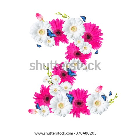 Alphabet Z, flower isolated on white background. Gerber, tulips and butterfly  - stock photo