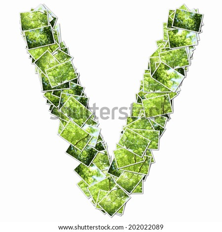 Alphabetic Capital Letters In The Photos Of Fresh Green