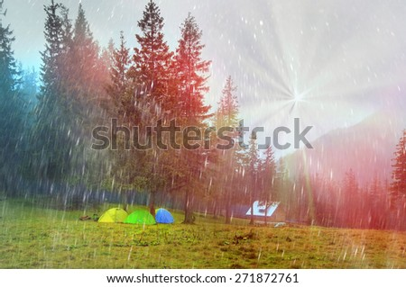 Alpine autumn p scenic sunrise in the beautiful Carpathian forest after rain shining colors and the freshness and coolness of the morning - will clear the new day and good weather after the storm - stock photo