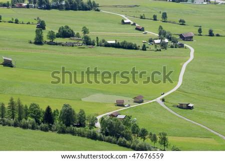 Alpine fields - stock photo