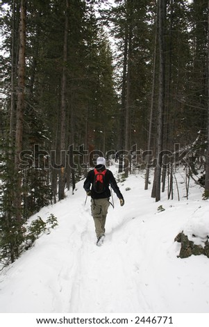 Alpine hiking on a snow covered trail - stock photo
