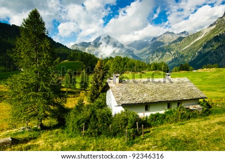 Alpine hut on vivid meadow in Switzerland - stock photo
