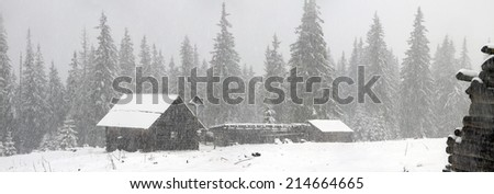 Alpine is the climate in spring or autumn when the snow storm comes and sweeps the mountains, villages, pastures, young and fresh flowers, breaking trees and avalanches. Black and white landscape  - stock photo