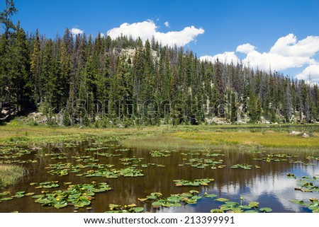 Alpine lake with Potbelly and mountain covered with fir trees. Uinta-Wasatch-Cache National Forest (UT) - stock photo