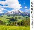 alpine landscape in the springtime - stock photo