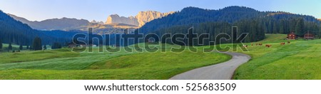 Alpine landscape with grazing cows, Dolomites, Italy