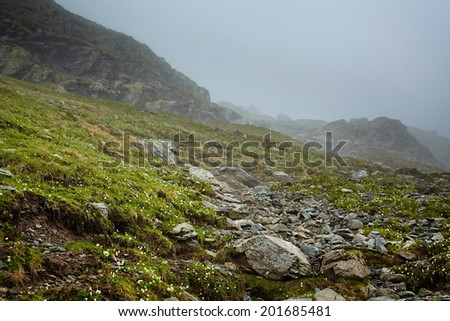 Alpine landscape with hiking trail going on the mountain in the mist - stock photo