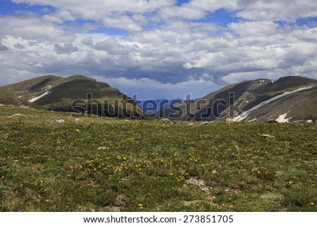 Alpine meadow at  Rocky Mountain National Park - stock photo
