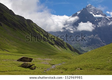 Alpine meadow in the Berner Oberland, Switzerland. First area, near Grindelwald. Mountain in the background is the Wetterhorn (3701 m / 12143 ft). - stock photo