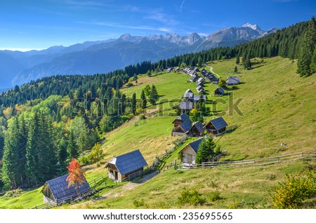 Alpine Meadow Planina Zajamniki in Bohinj - stock photo