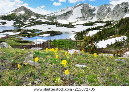 Alpine meadow with wild flowers and lake in Snowy Range Mountains, Medicine Bow, Wyoming - stock photo