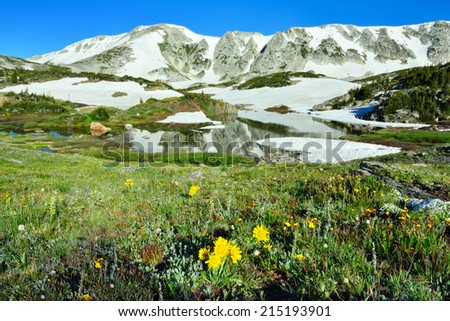 Alpine meadow with wild flowers and lake with reflection in Snowy Range Mountains, Wyoming - stock photo
