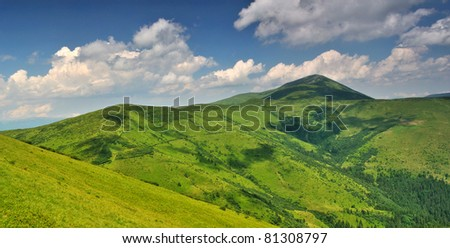 Alpine mountain meadows under Petros mount. Ukraine. Chornogora ridge - stock photo