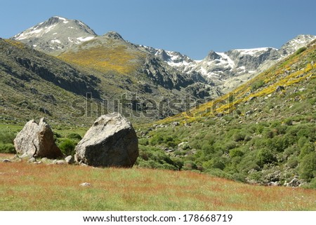 alpine pastures in Sierra de Gredos - stock photo