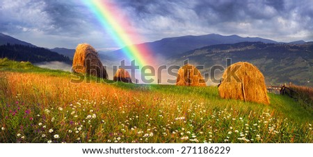 Alpine subsistence agriculture has old traditions of harvesting herbs for the winter, for natural milk in farms. Mow the grass and flowers, dried and folded in stacks on storage for cattle and sheep - stock photo
