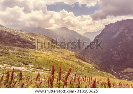 Alpine valley. Grass covering mountain slopes, Monte Rosa region.