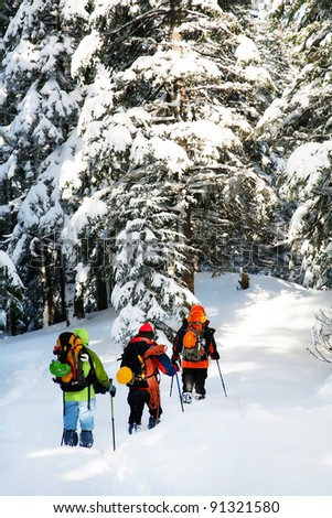 Alpinists approaching a mountain through a forest - stock photo