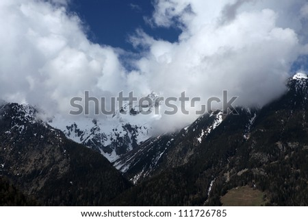 Alps in Grindelwald