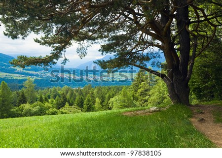 Alps mountains tranquil summer view - stock photo