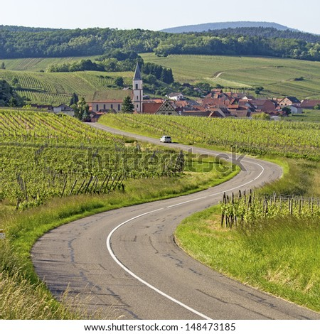 Alsace village, vineyard at route de wine. France.