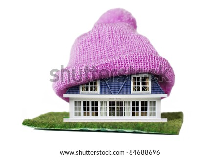 Alternative Energy Ideas, House with Purple Knitted Cap on a roof