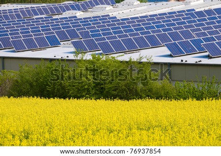 Alternative Energy  - rapeseed  and solar panels. - stock photo