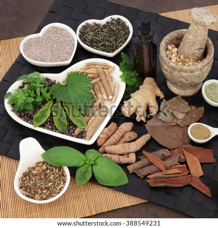 Alternative herbal medicine for men in porcelain dishes and spoons with mortar and pestle and dropper bottle. - stock photo
