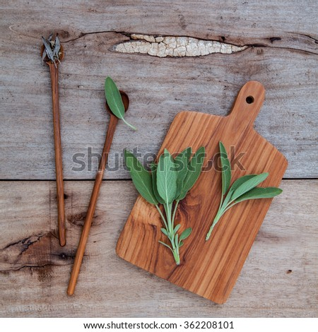 Alternative medicine and seasoning - Branch of fresh sage  and dried tied sage set up on old wooden table. - stock photo