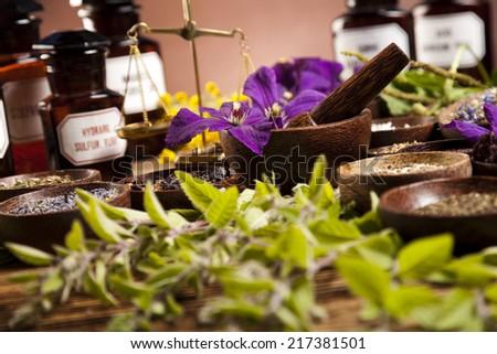 Alternative medicine, dried herbs  - stock photo