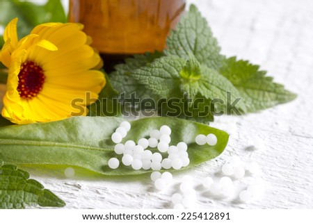 Alternative medicine herbs and homeopathic pills concept - stock photo