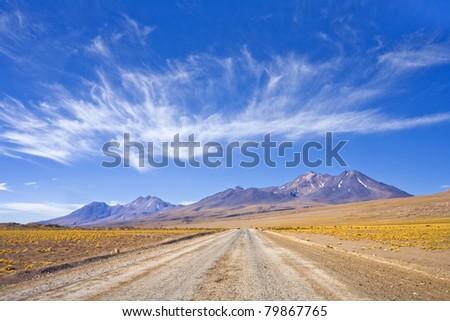 Altiplano, Atacama Desert, Chile, South America. - stock photo