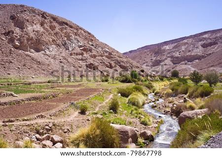 Altiplano, Atacama Desert, Chile, South America - stock photo