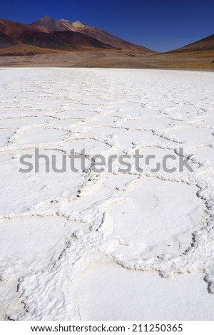 Altiplano high plateau and volcanic salt lake, Atacama Desert, Chile - stock photo
