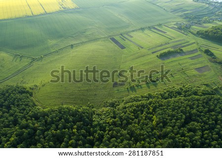 Amazing aerial view of spring forest - stock photo