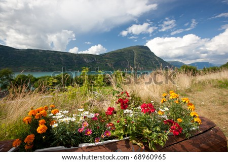 Amazing colorful flowers by lake Norway, Europe - stock photo