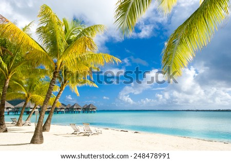 Amazing colors of polynesian exotic beach. Relax and vacation concept.