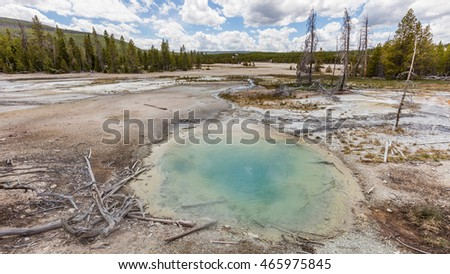 Amazing landscape of blue geyser, green forest and blue sky. Back Basin of Norris Geyser Basin. Yellowstone National Park, Wyoming