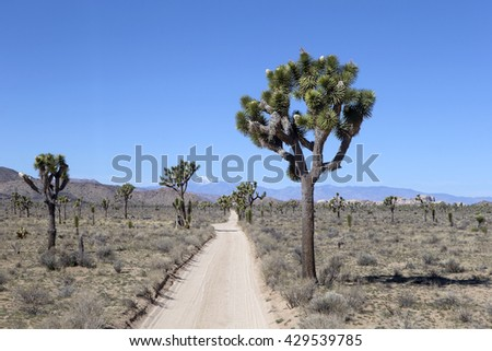 Amazing landscapes in Joshua Tree National Park, California, USA - stock photo