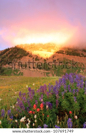 Amazing light from a summer sunset in Utah's Wasatch Mountains. - stock photo