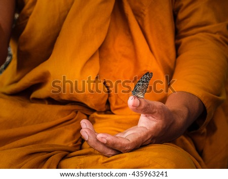 Amazing Monk Relaxing Hand with Butterfly  - stock photo